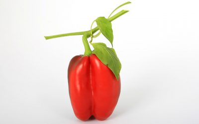 Why Peppers, and your Business need Processes to Grow